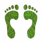 Groepslogo van Duurzame initiatieven.